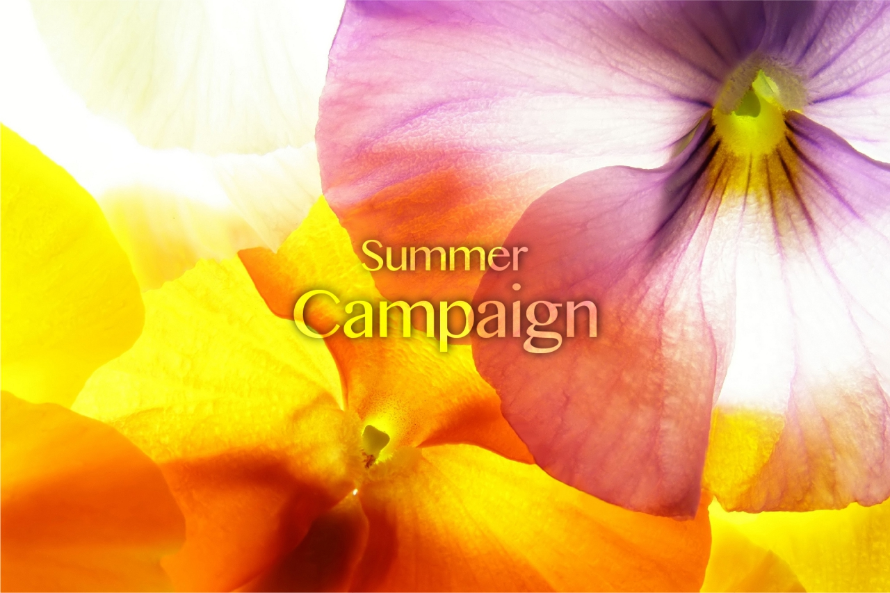 Summer Campaign with Breakfast